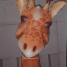 Giraffa (Immagine 3)
